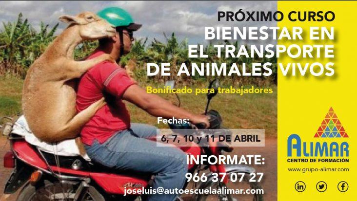 Curso_animales